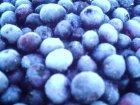 他の写真3: 冷凍ブルーベリー(お徳用) 1kg