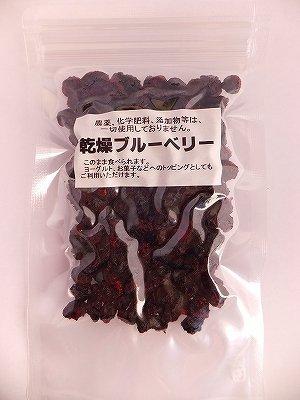 画像2: 乾燥ブルーベリー 50g